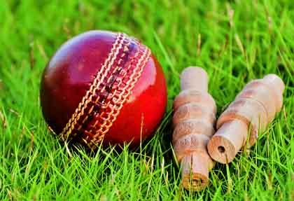 cricket-f
